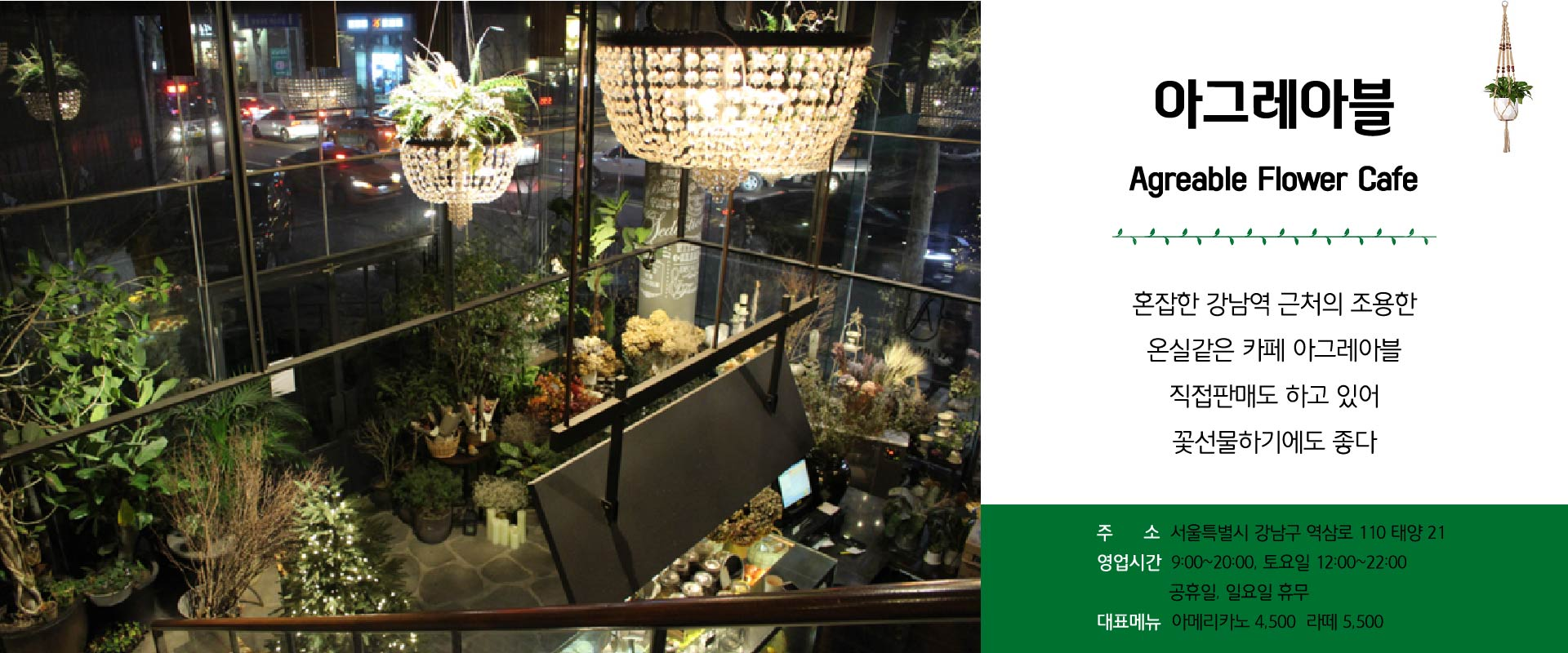 식물카페-06.jpg